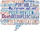 Peer review wordle