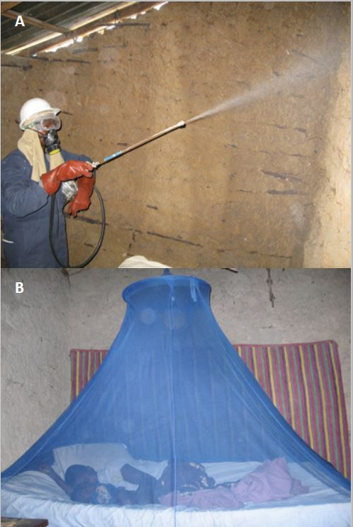 Figure 1. Mosquito control methods in The Gambia. A. Indoor residual spraying with DDT is administered by the Gambia National Malaria Control Programme (GNMCP) (image USAID). B. Long-lasting insecticide-treated bed nets (LLINs) were also used for malaria control and were administered during mass campaigns between 2013 and 2014 (image President's Mosquito Initiative).