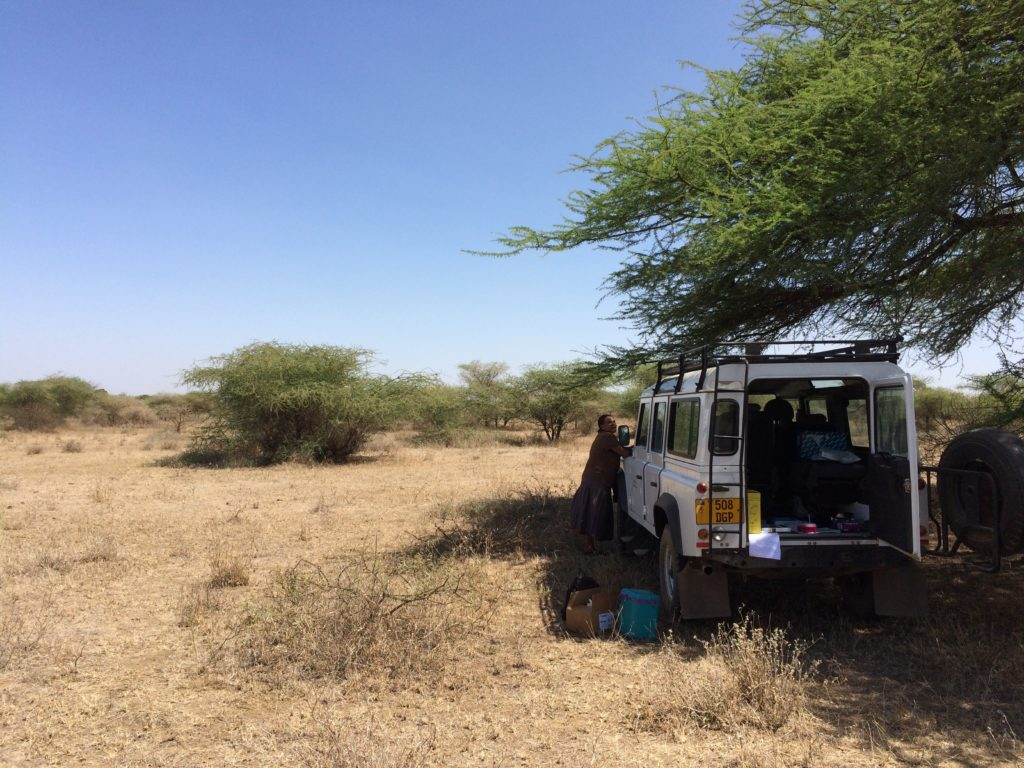 A typical environment for trachoma screening in this study region; the study team seek shade under a tree to test mock samples in field conditions. Image Credit Tamsyn Derrick