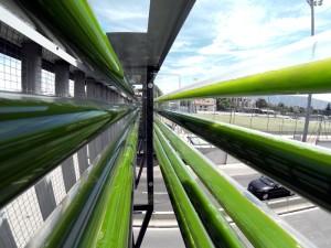 Algae running through viaducts above a highway in Geneva, Switzerland.
