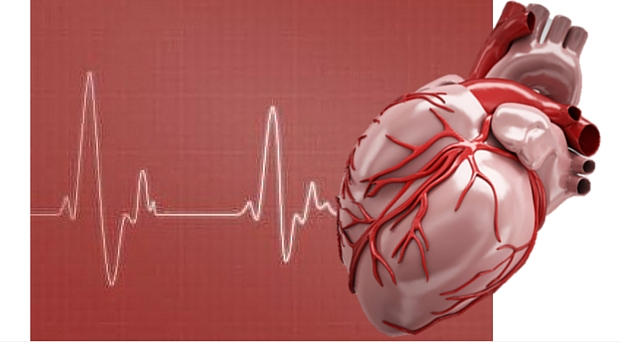 The risk of cardiovascular disease - read more for World Heart Day