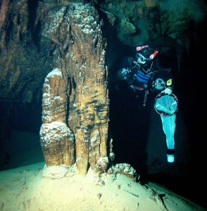 The adventurous search for cavernous crustaceans. Prof. Tom Iliffe cave diving for M. halope on Bermuda