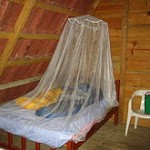 Image from http://en.wikipedia. org/wiki/Mosquito_ net