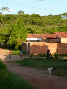 A typical area on the outskirts of Teresina where cases of leishmaniasis are found. Dogs are the main reservoir for the parasite.