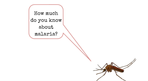 Quiz: Can you answer these questions about malaria? - On Biology