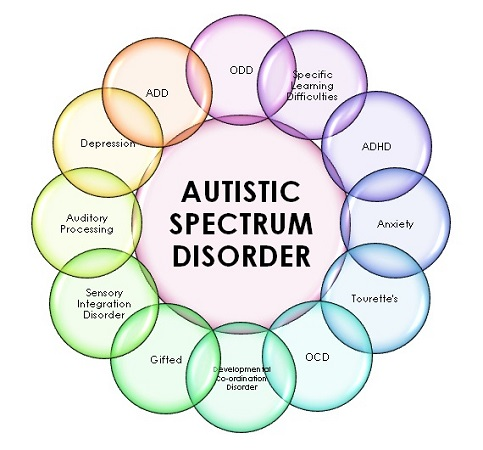 signs of autism in boys