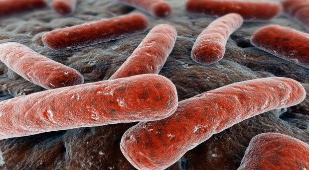 The patient costs of tuberculosis diagnosis and treatment - On Health