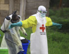 Congon Ebola