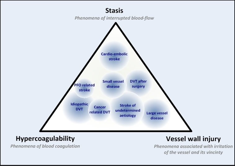 Figure 1. An example of a gradual classification of ischemic stroke and venous thrombosis according to the three elements of Virchow's triad.